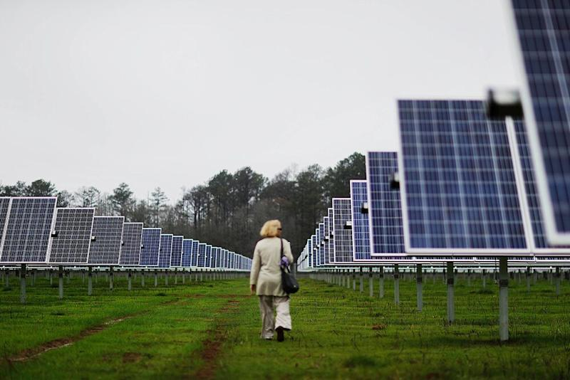 A reporter observes solar panels lining farmland that former President Jimmy Carter owns in his hometown of Plains, Georgia.