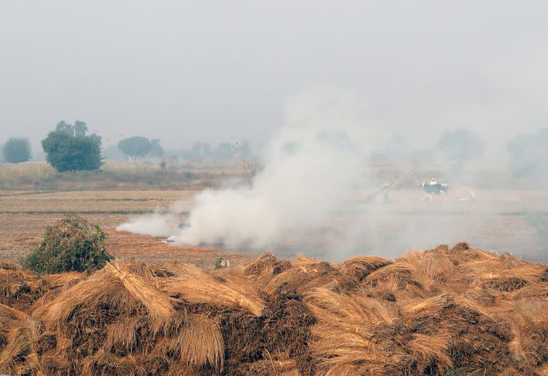 Indian capital loses cleaner lockdown air as farmers burn crop waste