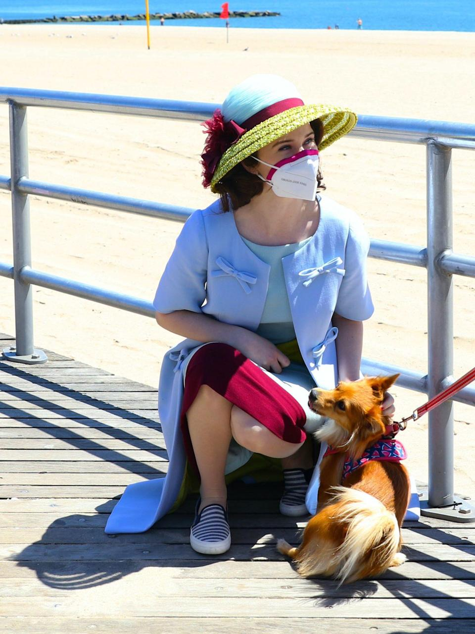 <p>If you're not stopping everything to give a dog a quick scratch, what are you doing?</p>