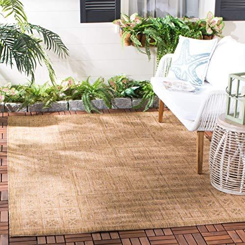 Safavieh Courtyard Collection Natural Area Rug (Amazon / Amazon)