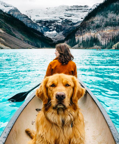 """<p>Aspen is the perfect pup to follow if you've got mountains on the mind. He and his owners live in Colorado and spend most of their days hiking, canoeing and camping — is it okay to be jealous of a dog's life?! </p><p><a href=""""https://www.instagram.com/aspenthemountainpup/"""" target=""""_blank"""">Follow Aspen here. </a></p>"""