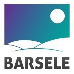 Barsele Minerals Corp. logo (CNW Group/Barsele Minerals Corp.)