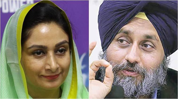 lok sabha elections, lok sabha elections 2019, lok sabha polls, punjab elections, elections in punjab, sad, shiromani akali dal, akali dal, ferozepur, bathinda, sukhbir singh badal, harsimrat kaur badal, parkash singh badal, bjp, congress, punjab news, election news, indian express news