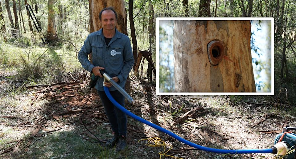 A photo of conservation biologist Matt Stephens holding his invention the Hallowhog. Source: NSW Government