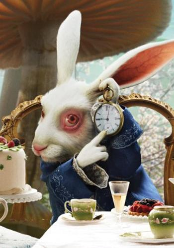 <p>Alice in Wonderland (2010). One of our favourite bunnies on film is undoubtedly the iconic White Rabbit in the 'Alice' movies, but specifically the Tim Burton remake. Michael Sheen portrayed Nivens McTwisp, the White Rabbit in the 2010 movie alongside Johnny Depp and Anne Hathaway, and was asked by Burton to focus on the 'twitchiness' of the character.</p>