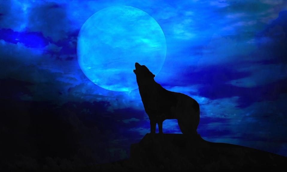 "<p>Werewolves are some of the most mysterious creatures in modern folklore. According to legend, these vicious monsters are humans with the ability to transform into wolves. Their shape-shifting takes place on the full moon and they have the ability to turn other humans into werewolves by biting or scratching them. All that means is that they also make incredible stars of <a href=""https://www.goodhousekeeping.com/holidays/halloween-ideas/g29579568/classic-halloween-movies/"" rel=""nofollow noopener"" target=""_blank"" data-ylk=""slk:scary Halloween movies"" class=""link rapid-noclick-resp"">scary Halloween movies</a>. </p><p>To help you plan an incredible scary movie night, we've found the best werewolf movies of all time. These werewolf movies have quite a few things in common: They usually involve bites from mysterious creatures, unexplained changes in appearance and character, and ultimately someone turning into a half-human, half-wolf hybrid. Each movie is sure to give you a good fright this Halloween season, so pick a favorite (or two) and start watching. Need a few picks you can stream for free? These are the <a href=""https://www.goodhousekeeping.com/holidays/halloween-ideas/g23570139/halloween-movies-netflix/"" rel=""nofollow noopener"" target=""_blank"" data-ylk=""slk:best Halloween movies on Netflix"" class=""link rapid-noclick-resp"">best Halloween movies on Netflix</a>. </p>"