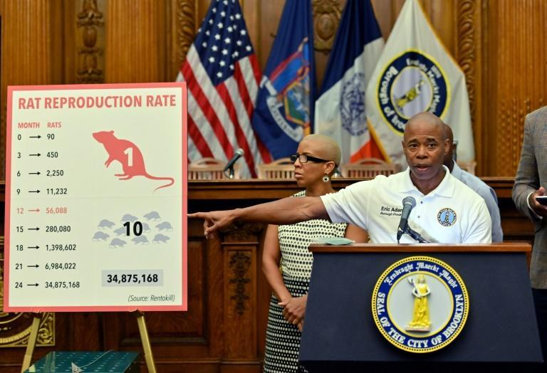 The New York borough of Brooklyn, which has waged a long-running war against rats, is led by Eric Adams, seen below (AFP Photo/Angela Weiss)