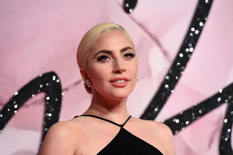 <p>File Image: Lady Gaga has offered $50,000 in return of her dogs, no questions asked</p> (Getty Images)