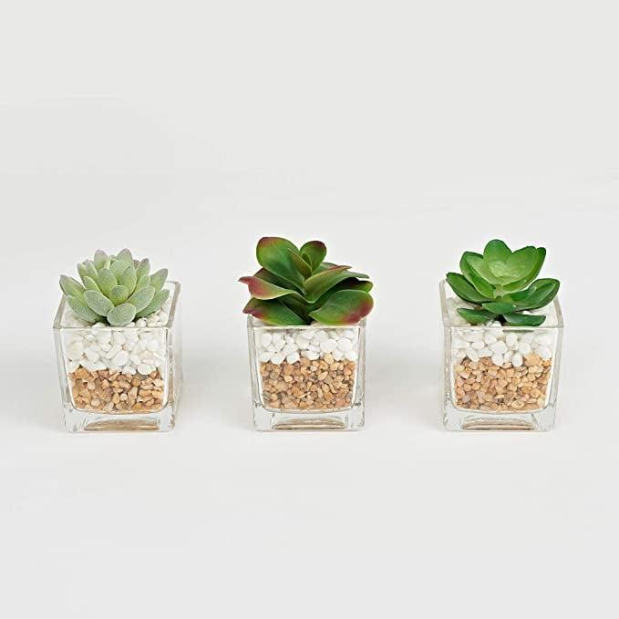 <p>These <span>Small Artificial Succulent Plants in Glass Pot with Pebbles</span> ($20) look sleek while adding more than just greenery to your decor.</p>