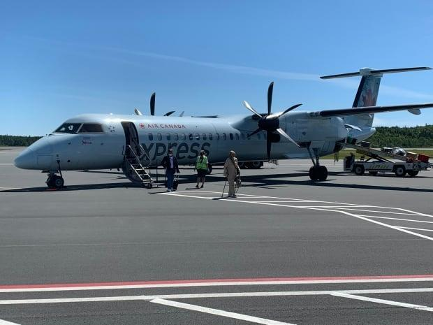 An Air Canada flight from Montreal arrives at the Saint John Airport in the pre-pandemic days. The restart dates for many airlines have been tweaked ahead of the province's reopening plan announcements, with flights now scheduled to resume on July 2. (Roger Cosman/CBC file photo - image credit)