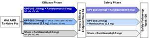 OPT-302 in combination with Ranibizumab
