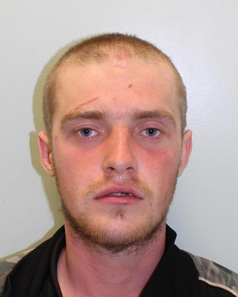 Locked-up: Tristan Long has been jailed over a horrific attack on a Good Samaritan in Croydon (Met Police)