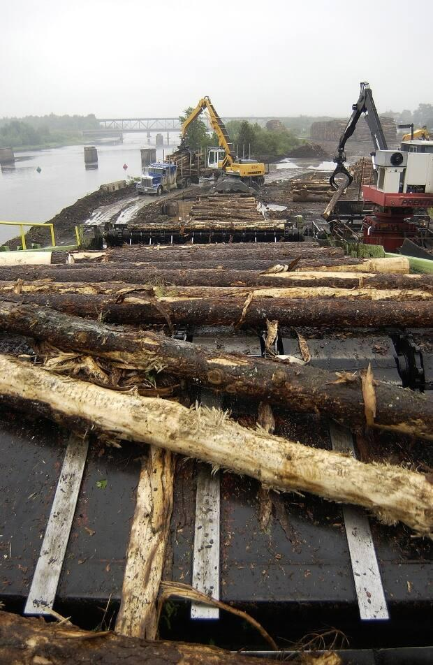 Softwood logs are loaded for processing at the JD Irving Ltd sawmill in Chipman.  The facility is one of New Brunswick's most important. (Submitted by Gerard Sirois/GNB - image credit)