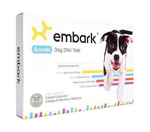 """<p><strong>Embark</strong></p><p>Amazon</p><p><strong>$199.00</strong></p><p><a href=""""https://www.amazon.com/dp/B01EINBA76?tag=syn-yahoo-20&ascsubtag=%5Bartid%7C10058.g.24851290%5Bsrc%7Cyahoo-us"""" rel=""""nofollow noopener"""" target=""""_blank"""" data-ylk=""""slk:SHOP IT"""" class=""""link rapid-noclick-resp"""">SHOP IT</a></p><p>If you rescued or adopted your dog, you probably don't know exactly what breed he or she is. Annoying, since a stranger asks you what kind of dog you have <em>every single time you walk him. </em>The Embark DNA test is on my Christmas list both for myself and for everyone I know with a dog, because I can't imagine a better gift than having a firm answer for these well-meaning passers-by. You just swab the inside of your dog's cheek and send the sample off for testing; you'll get your digital DNA results (complete with a dog family tree!) just a couple weeks later.</p>"""