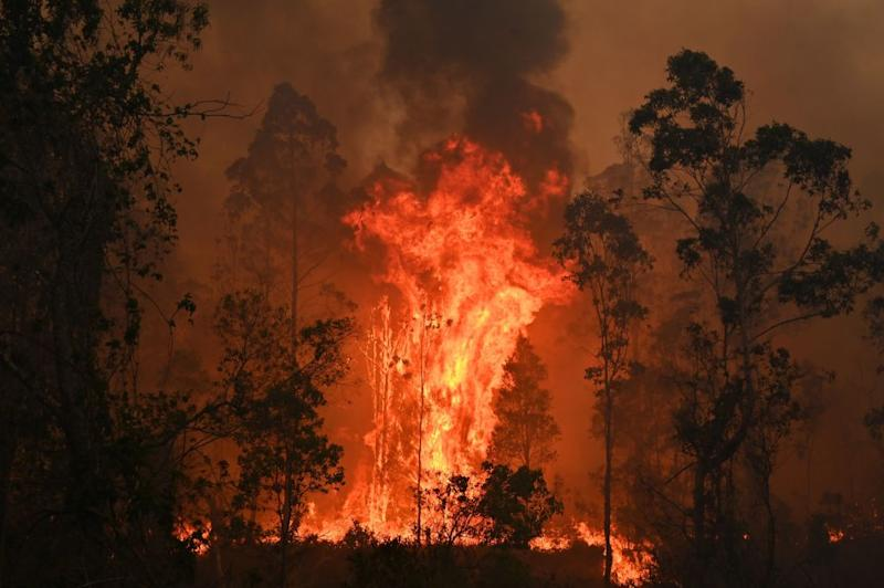 A fire rages in Bobin, 350km north of Sydney on Nov. 9, as firefighters try to contain dozens of out-of-control blazes that are raging in the state of New South Wales.   Peter Parks—AFP/Getty Images