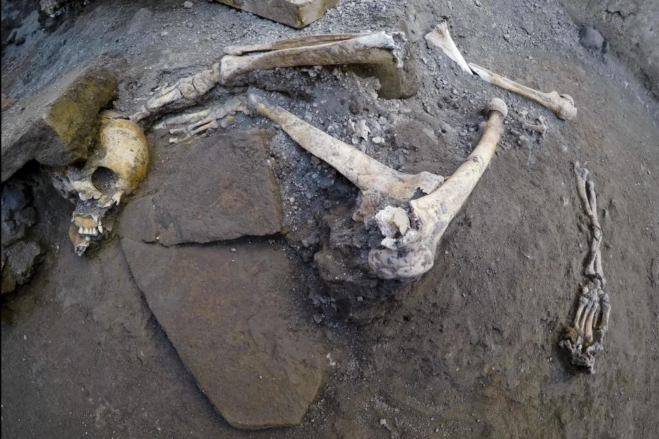 The remains of skeletons that were found in the Pompeii archaeological site, Italy (ANSA via AP)