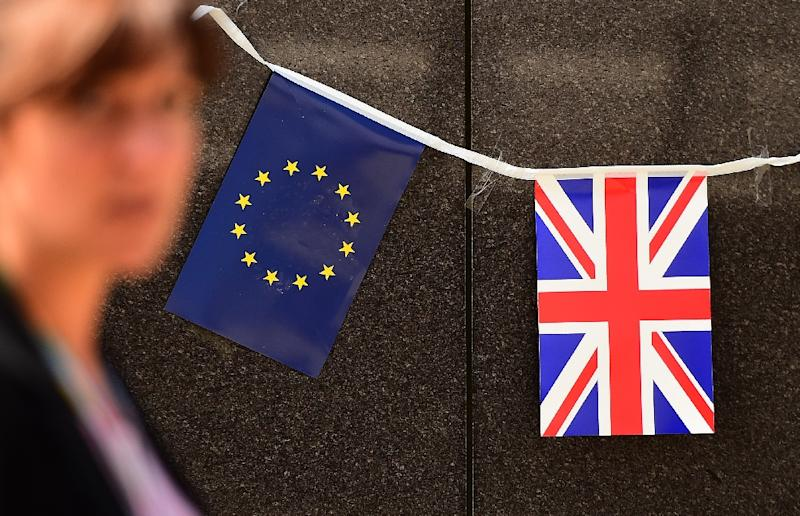 Prime Minister David Cameron wants Britain to remain part of the EU as long as he can secure reforms on issues such as making it harder for migrants from the bloc to access benefits (AFP Photo/Emmanuel Dunand)