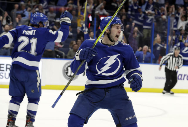 Tampa Bay Lightning center Tyler Johnson (9) celebrates his goal against the Toronto Maple Leafs during the second period of an NHL hockey game Thursday, Dec. 13, 2018, in Tampa, Fla. (AP Photo/Chris O'Meara)