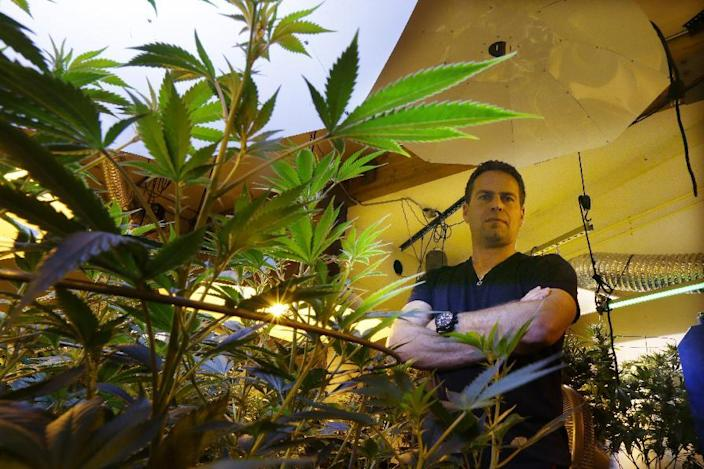"""FILE - This May 16, 2013 file photo shows Brent Miller posing for a photo in one of the grow rooms of his medical marijuana grow operation in Seattle. It took 50 years for American attitudes about marijuana to zigzag from the paranoia of """"Reefer Madness"""" to the excesses of Woodstock back to the hard line of Just Say No. And now, in just a few short years, public opinion has shifted so dramatically toward pragmatic acceptance of marijuana that even those who champion legalization are surprised at how quickly attitudes are changing and states are moving to approve the drug for medical use and just for fun. (AP Photo/Ted S. Warren, File)"""