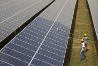 FILE PHOTO: File photo of workers cleaning photovoltaic panels inside a solar power plant in Gujarat
