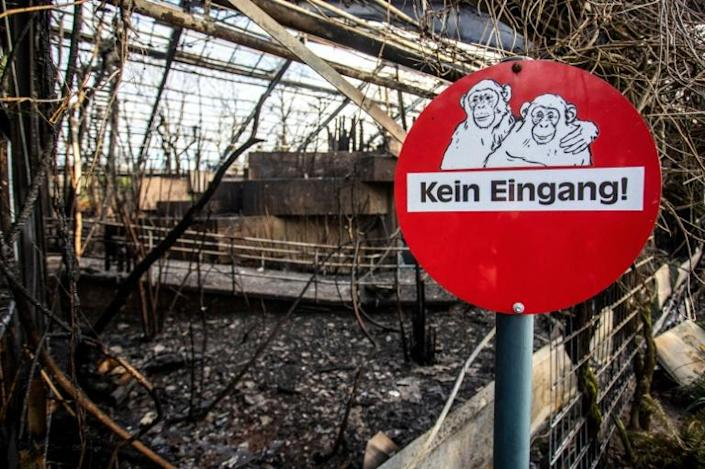 The zoo in Krefeld, western Germany, remains closed after the fire (AFP Photo/Christoph Reichwein)