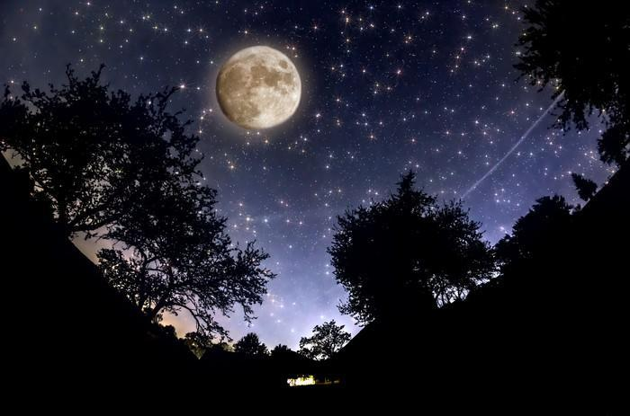 Moon visible in a starry sky over trees