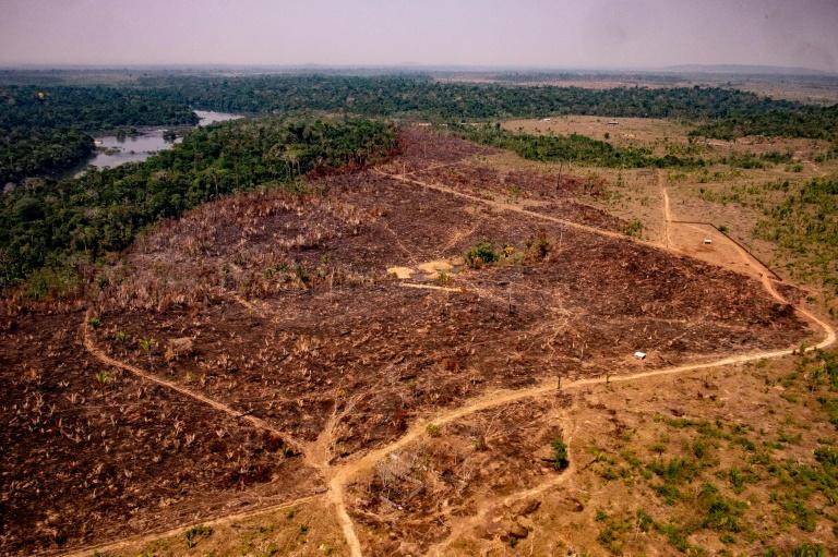 A handout picture released by the Communication Department of the State of Mato Grosso shows deforestation in the Amazon basin in the municipality of Colniza, Mato Grosso state, Brazil, on August 29, 2019