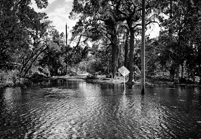 <p>A flooded neighborhood in the aftermath of Hurricane Irma in Bonita Springs, Fla. (Photo: Holly Bailey/Yahoo News) </p>
