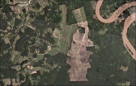 A oil palm plantation deforestation is seen from a satellite image in the northern  Amazon region of San Martin, Peru. This is an undated handout photo provided by Matt Finer, obtained by Reuters June 21, 2018. Handout via REUTERS