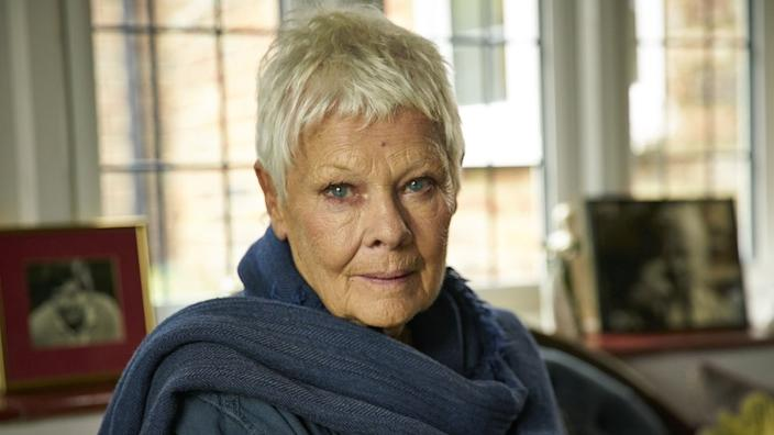Dame Judi Dench was among many theatre figures to voice concerns for her industry