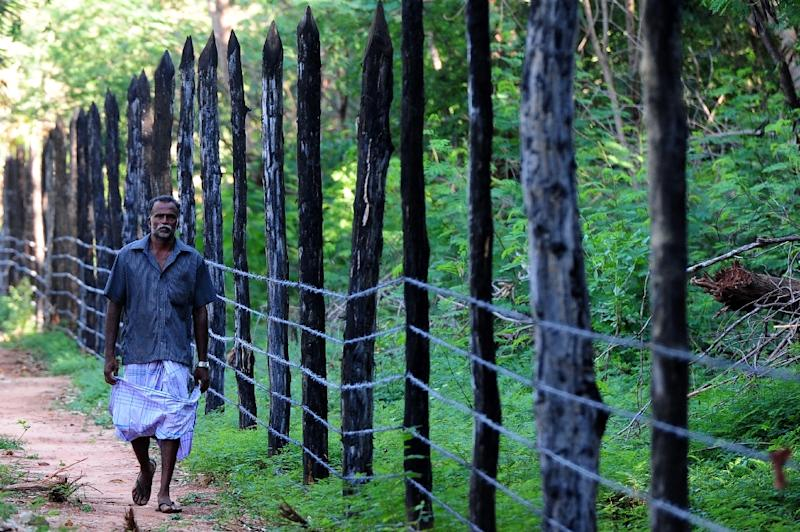 A Sri Lankan Tamil villager walks past a new barbed-wire fence that has come up in his area on the Jaffna peninsula, some 400 kilometres (250 miles) north of the capital Colombo, June 9, 2015 (AFP Photo/Lakruwan Wanniarachchi)