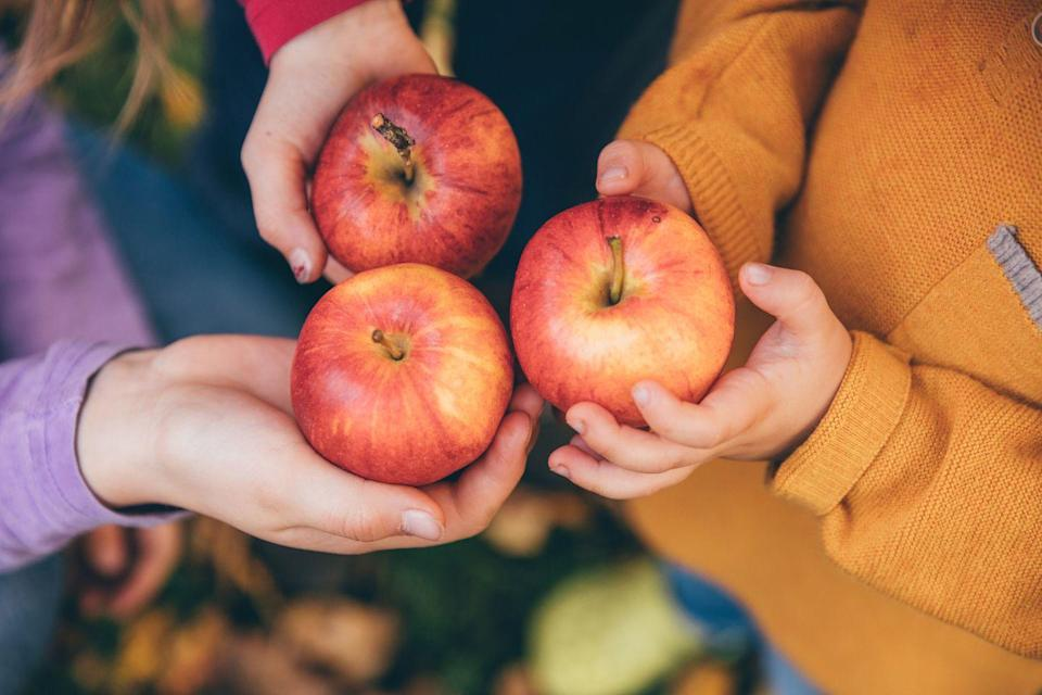 """<p>Apples contain quercetin, an antioxidant and anti-inflammatory agent that may reduce your risk of lung cancer, according to research published in <em><a href=""""https://www.ncbi.nlm.nih.gov/pmc/articles/PMC5119971/"""" rel=""""nofollow noopener"""" target=""""_blank"""" data-ylk=""""slk:Cancer Medicine"""" class=""""link rapid-noclick-resp"""">Cancer Medicine</a></em>.</p><p><strong>Recipe to try:</strong> <a href=""""https://www.womansday.com/food-recipes/food-drinks/a26345473/apple-and-pear-tart-recipe/"""" rel=""""nofollow noopener"""" target=""""_blank"""" data-ylk=""""slk:Apple and Pear Tart"""" class=""""link rapid-noclick-resp"""">Apple and Pear Tart</a></p>"""