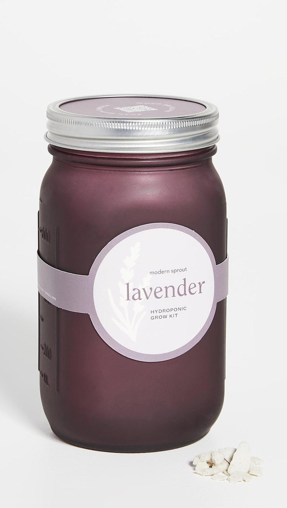 <p>If she's always wanted to try gardening, this <span>Shopbop @Home Lavender Garden Jar</span> ($20) is a low-risk way to try it.</p>