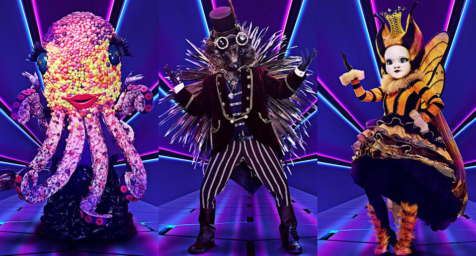 Octopus, Hedgehog and Queen Bee are The Masked Singer's final three. (ITV)