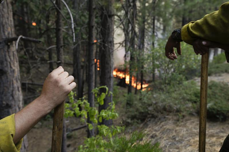 Two firefighters monitor a back burn during the Rim Fire near Yosemite National Park, Calif., on Tuesday, Aug. 27, 2013. Unnaturally long intervals between wildfires and years of drought primed the Sierra Nevada for the explosive conflagration chewing up the rugged landscape on the edge of Yosemite National Park, forestry experts say. The fire is the biggest in the Sierra's recorded history and one of the largest on record in California. (AP Photo/Jae C. Hong)