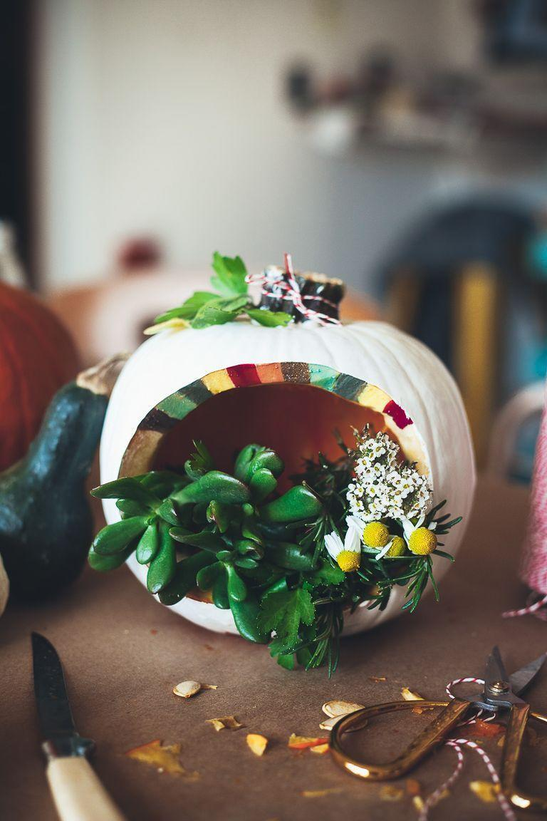 """<p>There's no better carving idea for a green thumb than a pumpkin terrarium. Small plants and flowers add vibrancy to the scene.</p><p><strong>Get the tutorial at <a href=""""http://mynameisyeh.com/mynameisyeh/2014/10/a-pumpkin-carving-party"""" rel=""""nofollow noopener"""" target=""""_blank"""" data-ylk=""""slk:My Name Is Yeh"""" class=""""link rapid-noclick-resp"""">My Name Is Yeh</a>.</strong></p><p><strong><a class=""""link rapid-noclick-resp"""" href=""""https://go.redirectingat.com?id=74968X1596630&url=https%3A%2F%2Fwww.walmart.com%2Fsearch%2F%3Fquery%3Dterrarium%2Bplants&sref=https%3A%2F%2Fwww.thepioneerwoman.com%2Fhome-lifestyle%2Fcrafts-diy%2Fg36982763%2Fpumpkin-carving-ideas%2F"""" rel=""""nofollow noopener"""" target=""""_blank"""" data-ylk=""""slk:SHOP TERRARIUM PLANTS"""">SHOP TERRARIUM PLANTS</a><br></strong></p>"""