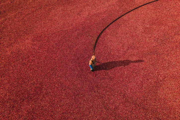 Photo credit: Abstract Aerial Art - Getty Images