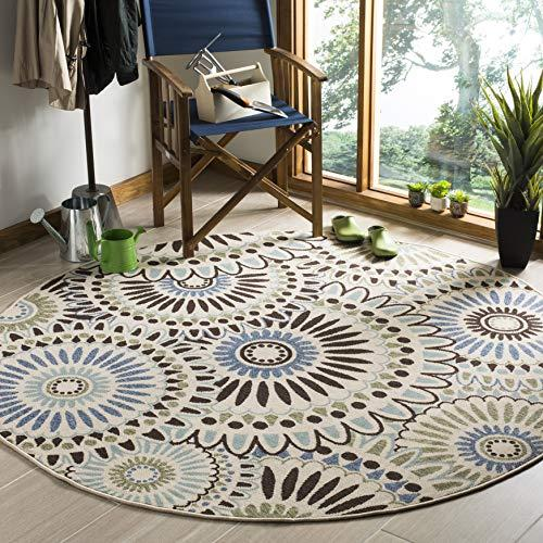 Safavieh Veranda Collection Round Rug (Amazon / Amazon)