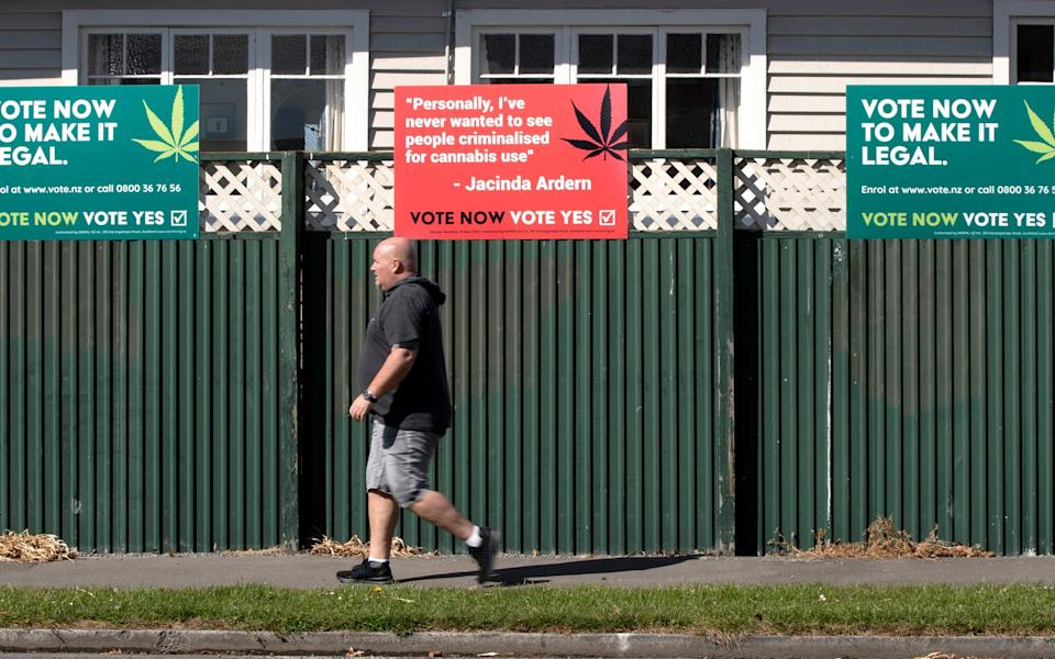 The cannabis vote could yet go either way - AP