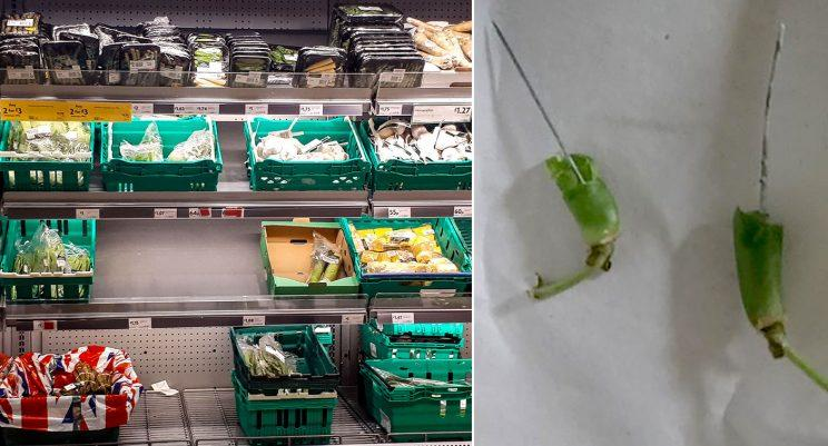 Product recall: Green beans are off the menu at Morrisons (Mercury)