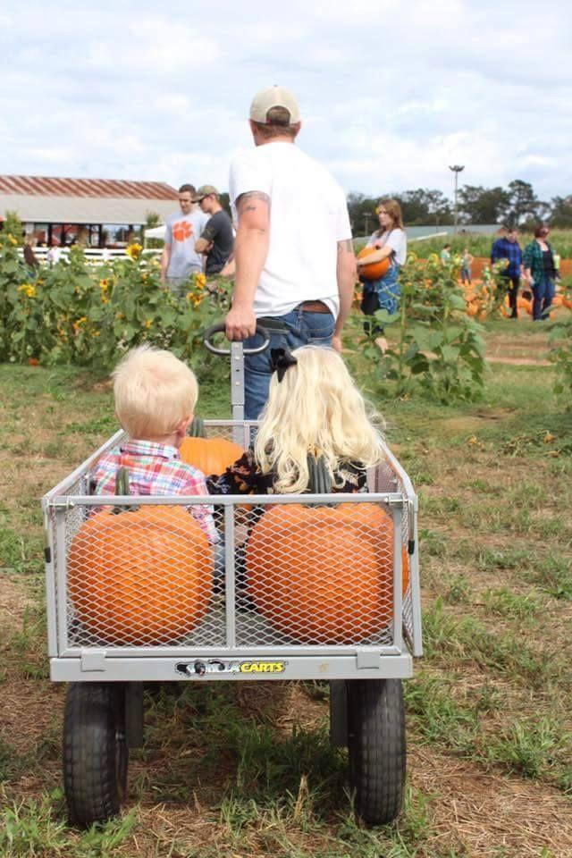 """<p><strong>Rock Hill, South Carolina</strong></p><p>You can spend your day at <strong><a href=""""https://www.cherryplacefarm.com/cornmaze-pumpkin-patch"""" rel=""""nofollow noopener"""" target=""""_blank"""" data-ylk=""""slk:Cherry Place Farms"""" class=""""link rapid-noclick-resp"""">Cherry Place Farms</a></strong> this fall taking in the super sweet activities including a pumpkin patch and a corn maze. While you're at it, sample some (free) popcorn. Keep your hand sanitizer on deck, and get your little ones ready to feed and pet the animals. You're welcome to bring your lovely leashed dogs too! Tickets are $8 per person with free admission for children under 2.<br><br><em>*This photo is not from Cherry Place Farms.</em><br></p>"""