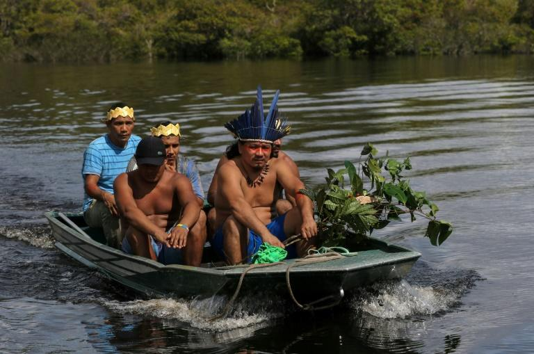 Satere mawe healers return to their community in Brazil's Amazonas state, after collecting herbs to be used in treatments for symptoms of COVID-19