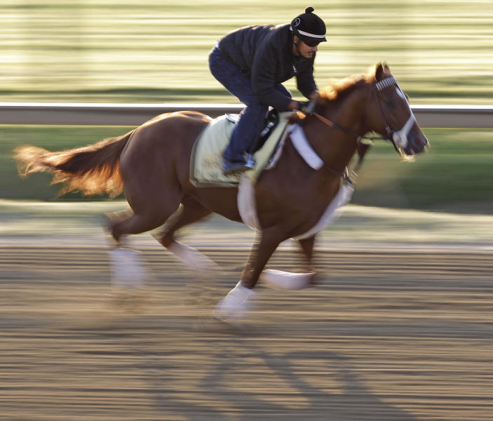 Exercise rider Johnny Garcia rides Preakness Stakes entrant I'll Have Another during a morning workout at Pimlico Race Course, Friday, May 18, 2012, in Baltimore. The Preakness Stakes horse race takes place Saturday.(AP Photo/Patrick Semansky)
