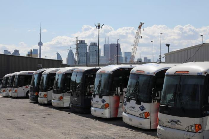 Idle Greyhound buses are parked after the transportation company announced that it had permanently closed its service in Canada