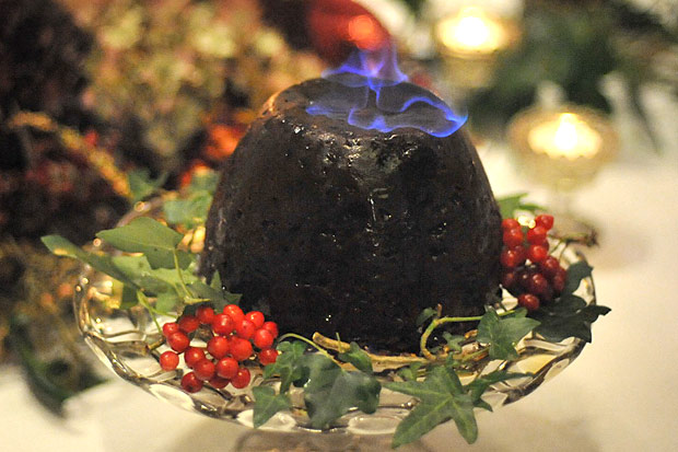 Christmas Pudding (Publicity Picture)