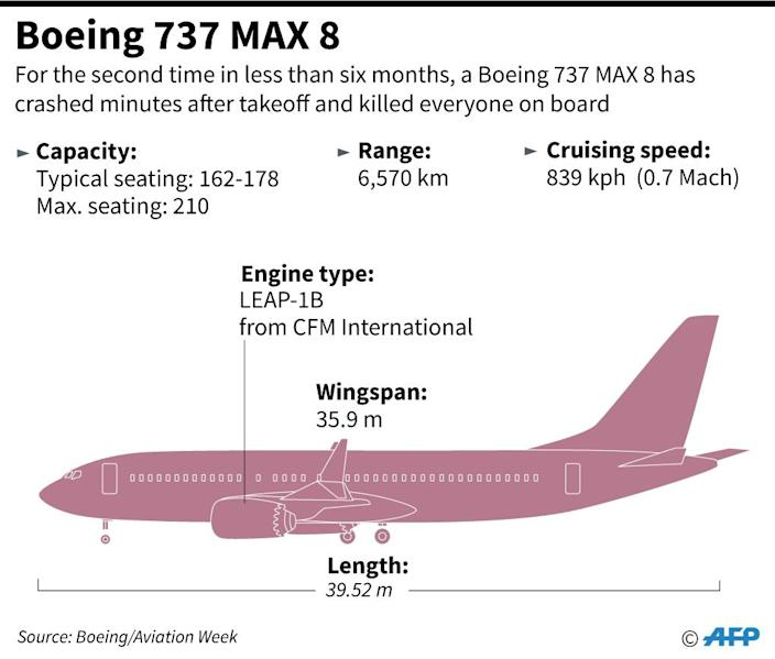 Factfile on the Boeing 737 MAX 8 (AFP Photo/)