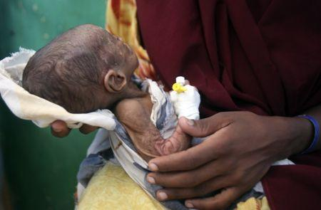 Million in Somalia Don't Get Enough Food, UN Report Says