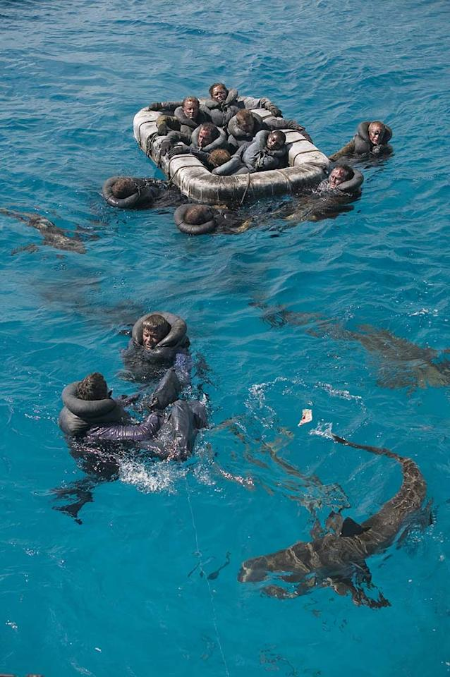 Caribbean Reef sharks circling the sailors in reenactment scene after USS Indianapolis had been sunk by Japanse submarine. As seen on Ocean of Fear: Worst Shark Attack Ever.