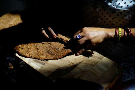 A woman rolls cigars at the 19th Habanos Festival in Havana, Cuba