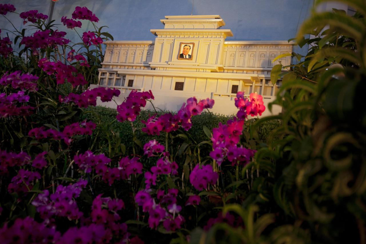 """In this April 13, 2011 photo, flowers known in North Korea as """"Kimilsungia"""" are displayed next to a small replica of the Kim Il Sung mausoleum at an flower exhibition in Pyongyang, North Korea. (AP Photo/David Guttenfelder)"""
